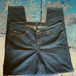 TORRID 22T Denim Skinny Jeans 591222